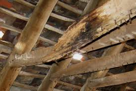 Example of timber rot