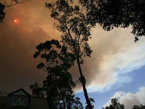 NSW bushfires formally declared a catastrophe