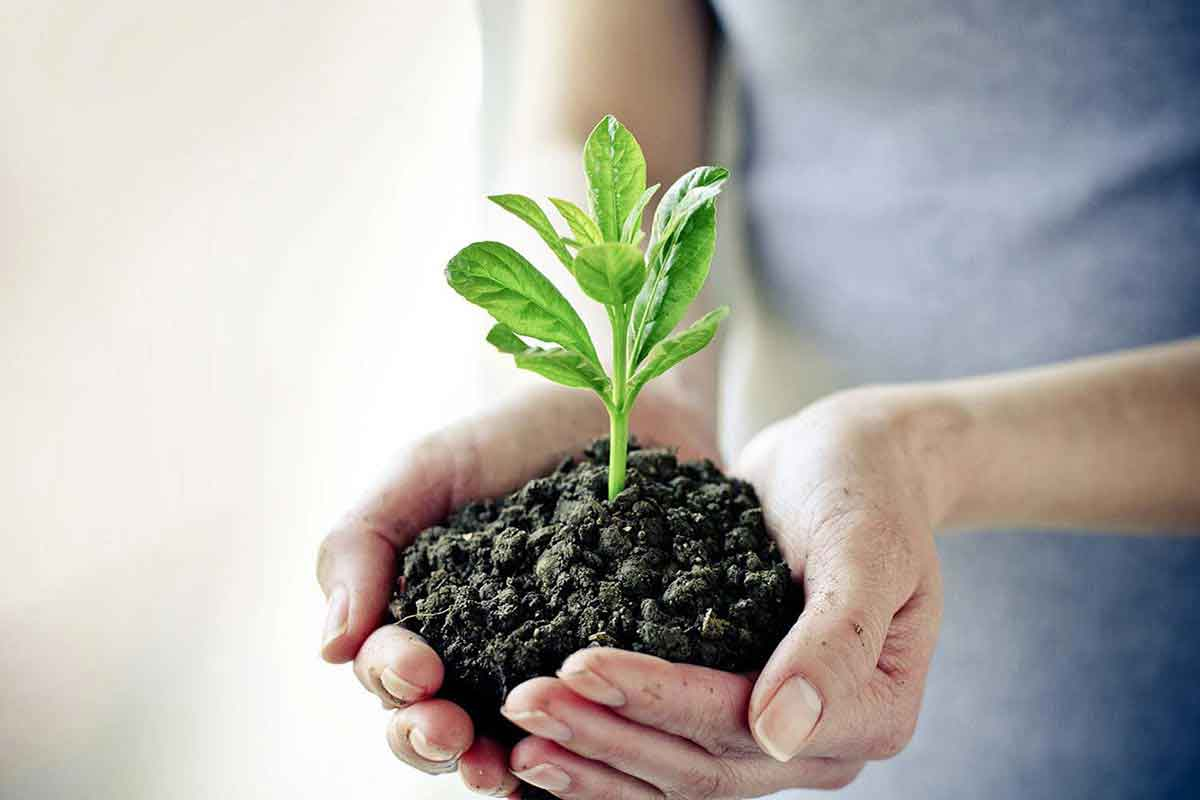 How one tech firm has put the CSR back into HR