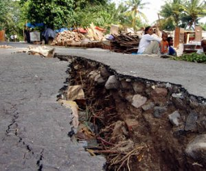 NZ quake costs prompt HY15 loss