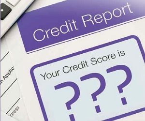 Comprehensive credit reporting: the Naked Borrower