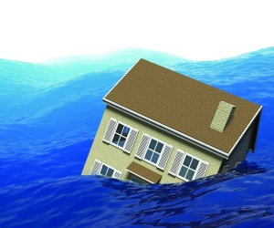Could Australia follow NZ on property damage definition?