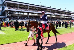 The good (and the bad) impacts of the Melbourne Cup on staff