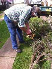 Duane Robinson: Renovating with a chainsaw