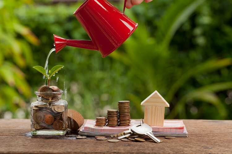 Purchasing a home for property investment can be like starting a garden