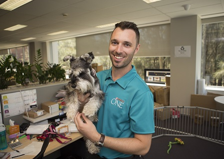 'Once a pet is in the office there are rules and expectations'