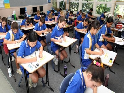 NAPLAN results hold steady