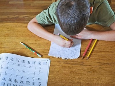 Schools have 'dropped the ball' on literacy – expert