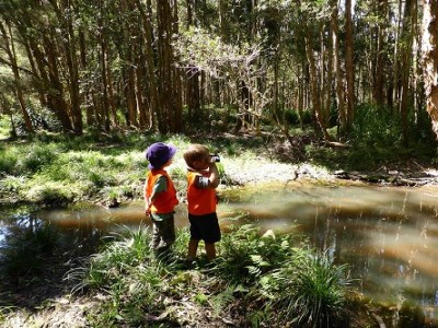 'Nature School' shines light on play-based learning