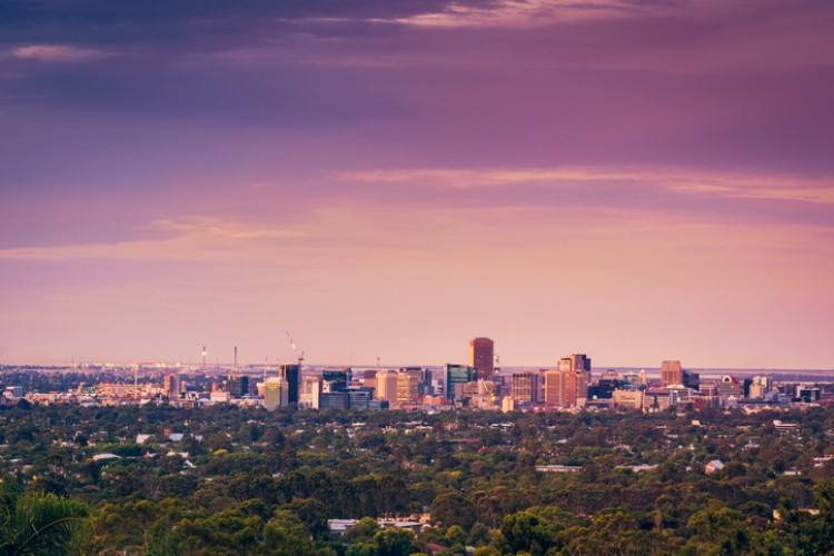 The Adelaide housing market continued to show resiliency at the end of 2018.