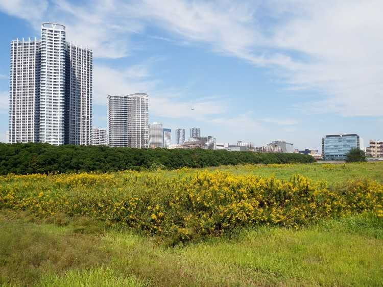 HIA-CoreLogic: Price of vacant residential land rose, despite declining sales
