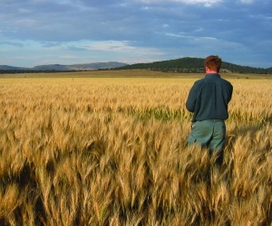International underwriter moves into agriculture