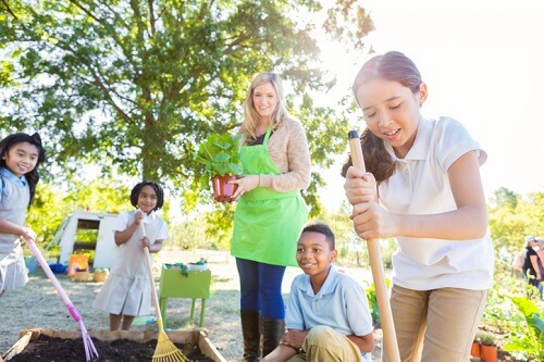 Research highlights value of outdoor education