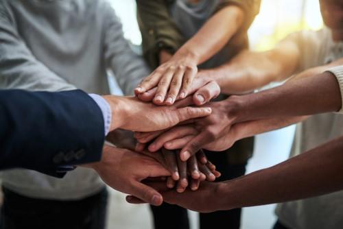 'Progress is glacial': Company board diversity in NZ