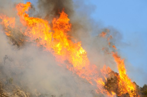 ICA, fire services warn against bushfire underinsurance