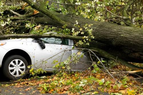 No-fault insurance scheme in surplus