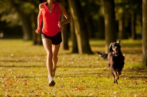 PetSure partners with FitBark