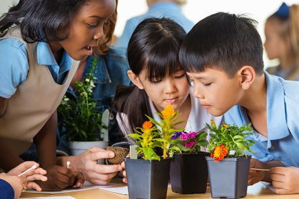 How schools can develop students' sustainable practices