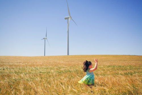 4 firms drafted for Australia's largest wind farm