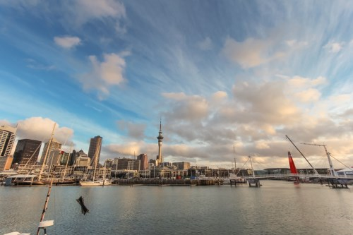 MECON Insurance opens Auckland office