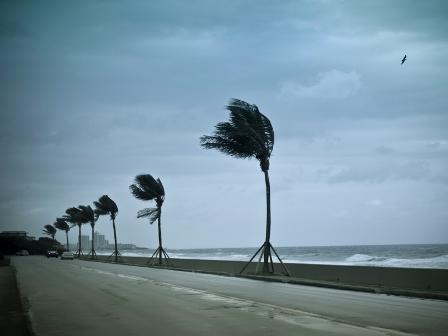 Sri Lanka's disaster risk insurance investment pays off