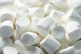 What do marshmallows have to do with HR?