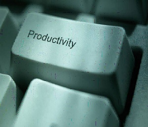 Productivity tops business concerns