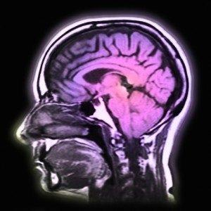 Chewing gum quickens brain